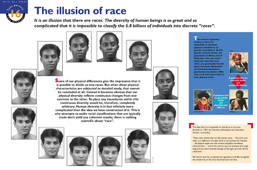 illusion of race